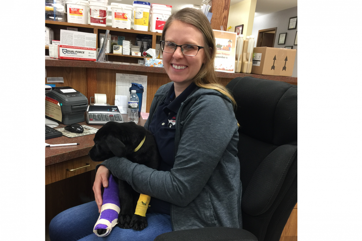 blood work for pets farley ia